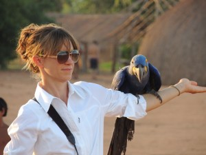 The Author and a trained Hyacinth Macaw in the Amazon for a project
